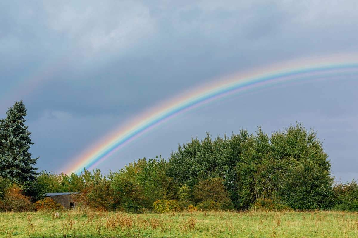 Regenbogen im Land der Tiere, dem veganen Lebenshof zwischen Hamburg, Lüneburg und Berlin
