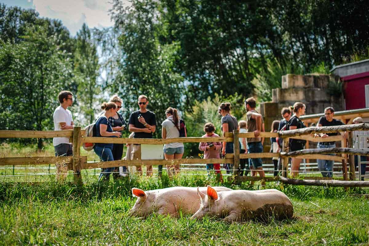 Anni und Rosalie beim Frühlingsfest im Land der Tiere, dem veganen Lebenshof zwischen Hamburg, Lüneburg und Berlin