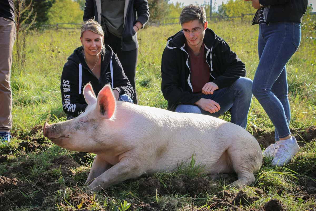 Anni und die BesucherInnen im Land der Tiere, dem veganen Lebenshof zwischen Hamburg, Lüneburg und Berlin