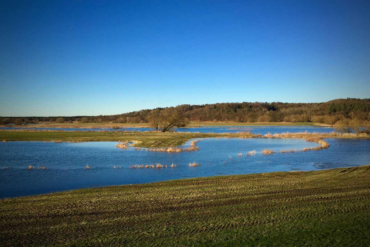 Das Unesco-Biosphärenreservat Flusslandschaft Elbe