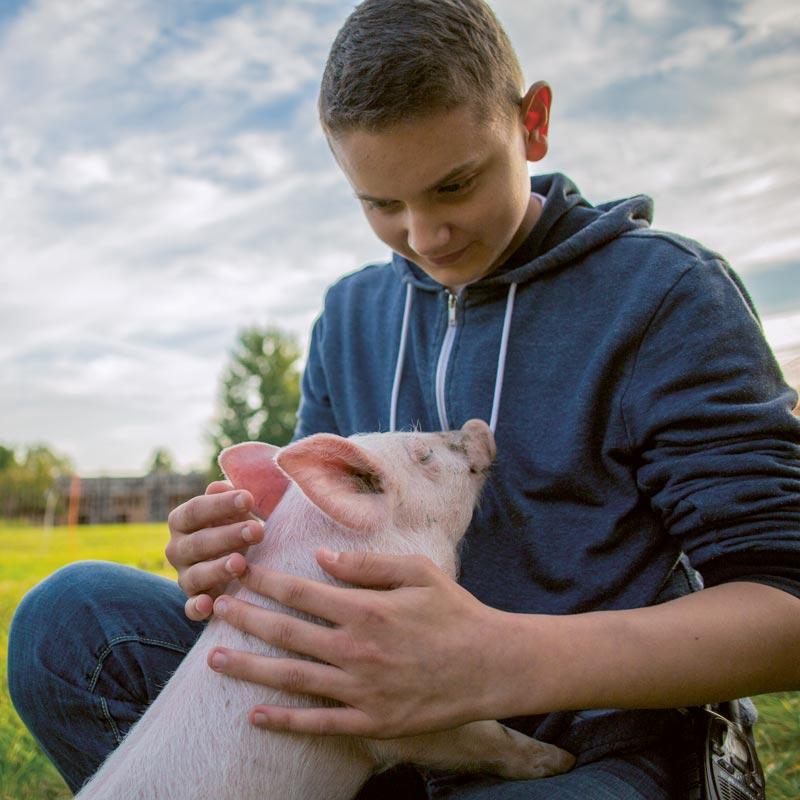 Fritz und Anni im Land der Tiere, dem veganen Lebenshof zwischen Hamburg, Lüneburg und Berlin