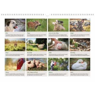 Der Land der Tiere Kalender 2020 mit 16 Seiten voller Infos zu Tieren und Tierrechten.