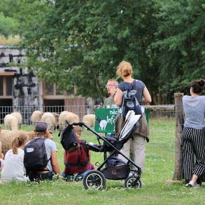 Sommerfest 2019 im Land der Tiere
